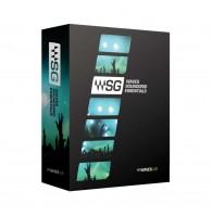 Waves SGEB (Yamaha) - комплект плагинов для Sound Grid Servers